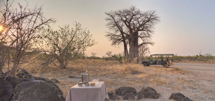 Savute under Canvas luxury safari guests stop for sundowners under a baobab tree in the Savute corner of Chobe National Park - photo courtesy Stevie Mann