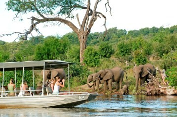 A customized safari boat from Sanctuary Chobe Chilwero brings guests to within meters of  elephant on the Chobe river bank