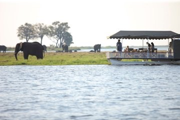 A scenic and relaxing river safari at andBeyond Chobe under Canvas
