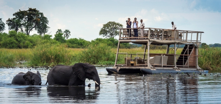 Viewing elephant from the barge at Kings Pool on a luxury safari in the Linyanti - photo courtesy Dana Allen