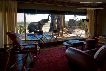 Lavish tent with extraordinary view of an elephant at Zarafa camp in the Selinda private reserve