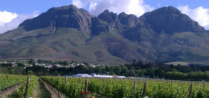 Glorious mountains and peaceful vineyards in the Cape Winelands, South Africa